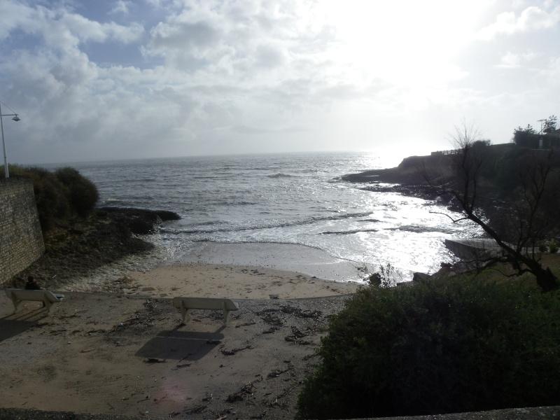 La côte et ses plages entre Royan et Nauzan par le GR4 Imgp5235