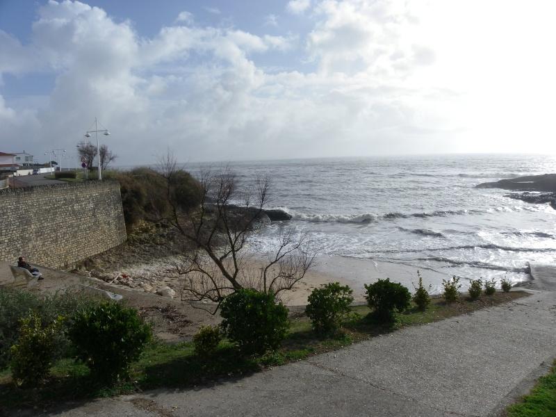 La côte et ses plages entre Royan et Nauzan par le GR4 Imgp5236