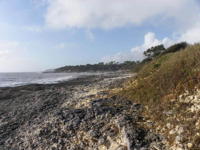 La côte et ses plages entre Royan et Nauzan par le GR4 Imgp5241
