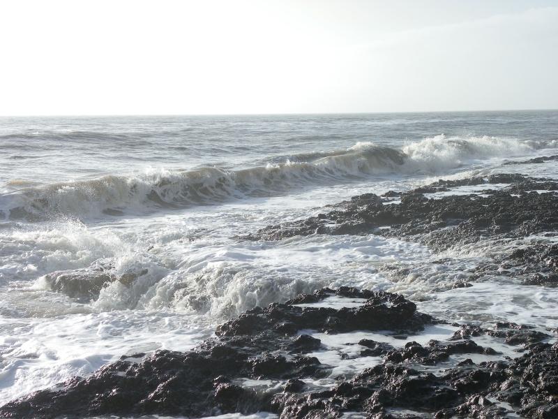 La côte et ses plages entre Royan et Nauzan par le GR4 Imgp5311