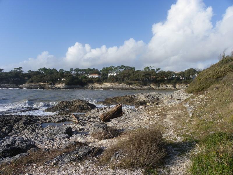La côte et ses plages entre Royan et Nauzan par le GR4 Imgp5314