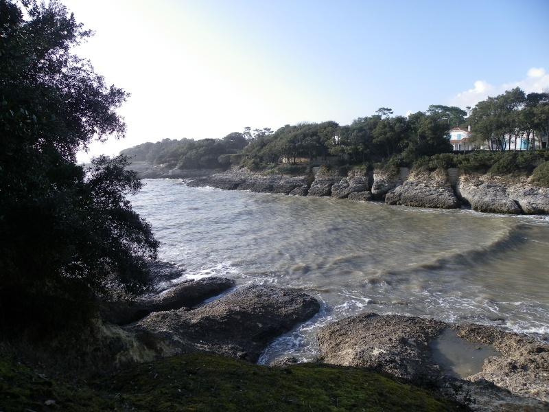 La côte et ses plages entre Royan et Nauzan par le GR4 Imgp5315