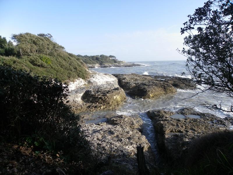 La côte et ses plages entre Royan et Nauzan par le GR4 Imgp5321