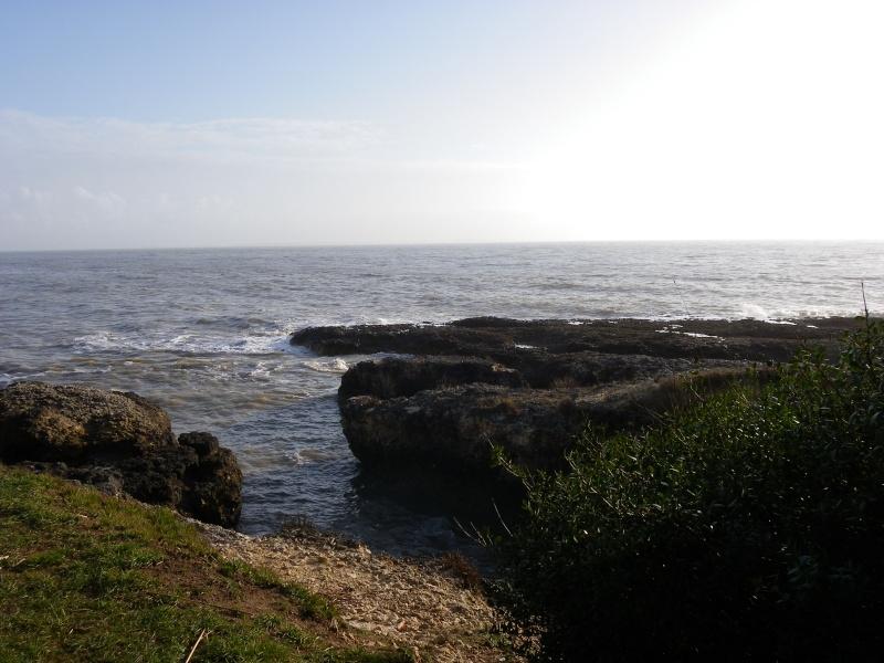 La côte et ses plages entre Royan et Nauzan par le GR4 Imgp5322