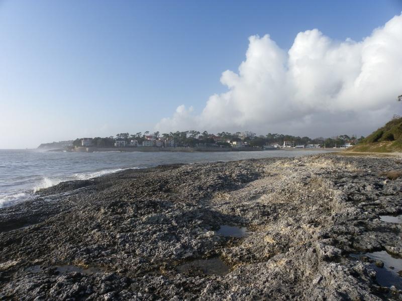 La côte et ses plages entre Royan et Nauzan par le GR4 Imgp5323