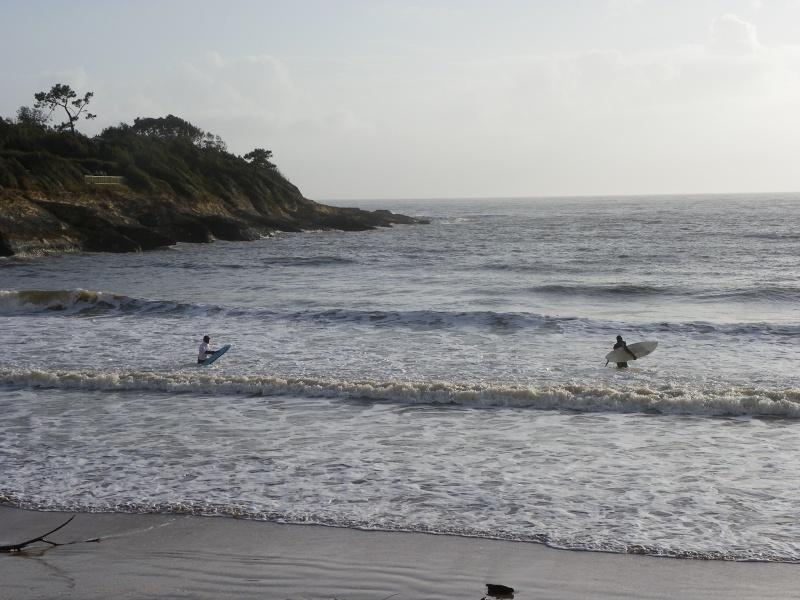 La côte et ses plages entre Royan et Nauzan par le GR4 Imgp5330