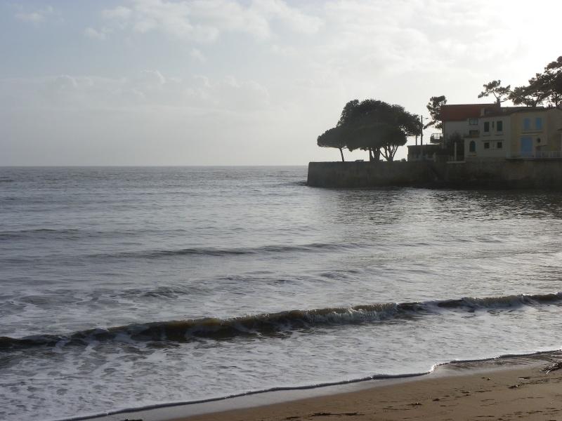 La côte et ses plages entre Royan et Nauzan par le GR4 Imgp5332