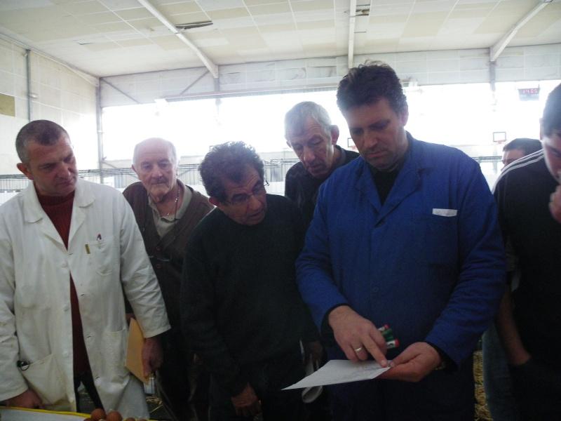 Exposition nationale d'aviculture : Rochefort le 26 et 27 février 2011 Imgp5619