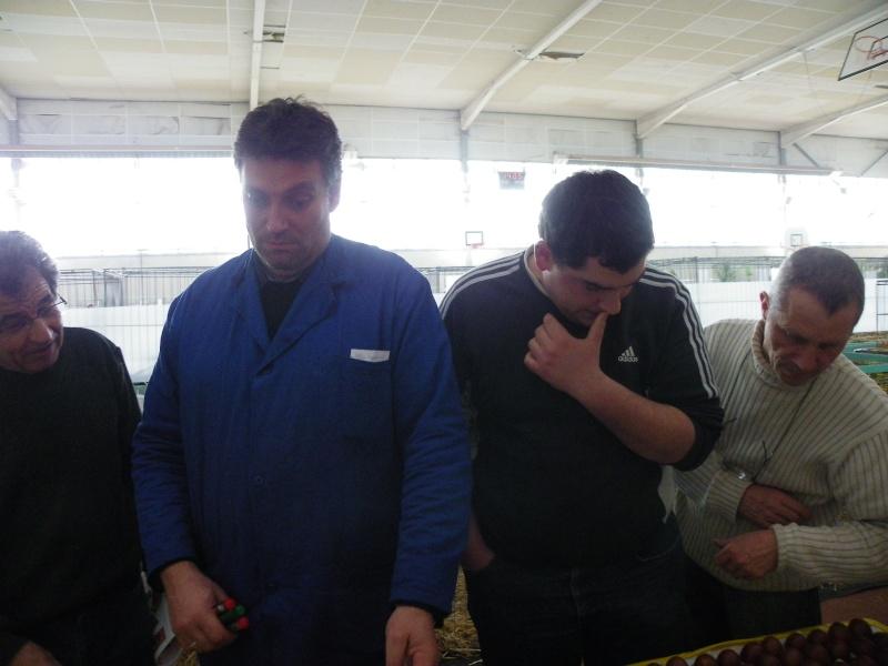 Exposition nationale d'aviculture : Rochefort le 26 et 27 février 2011 Imgp5620