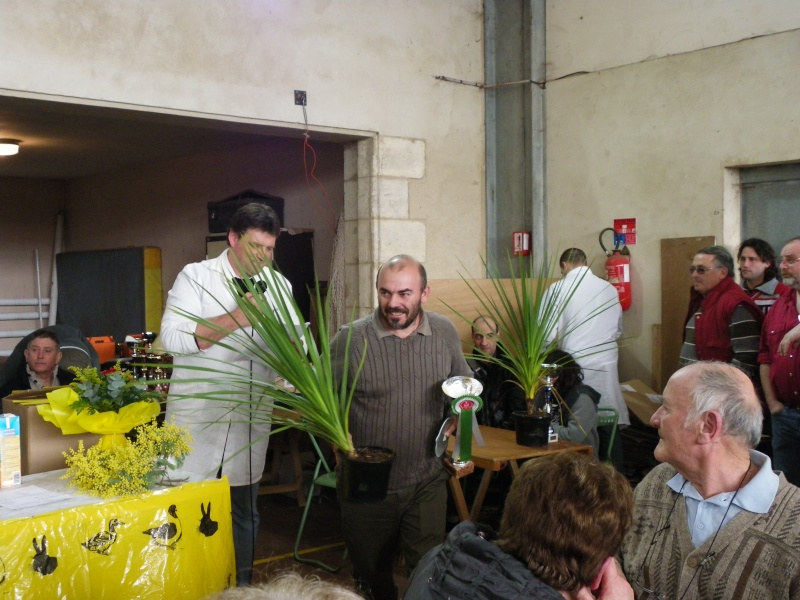 Exposition nationale d'aviculture : Rochefort le 26 et 27 février 2011 Imgp6121