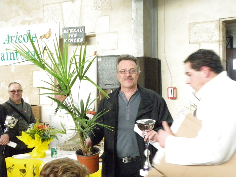 Exposition nationale d'aviculture : Rochefort le 26 et 27 février 2011 Imgp6129