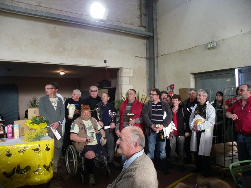 Exposition nationale d'aviculture : Rochefort le 26 et 27 février 2011 Imgp6146