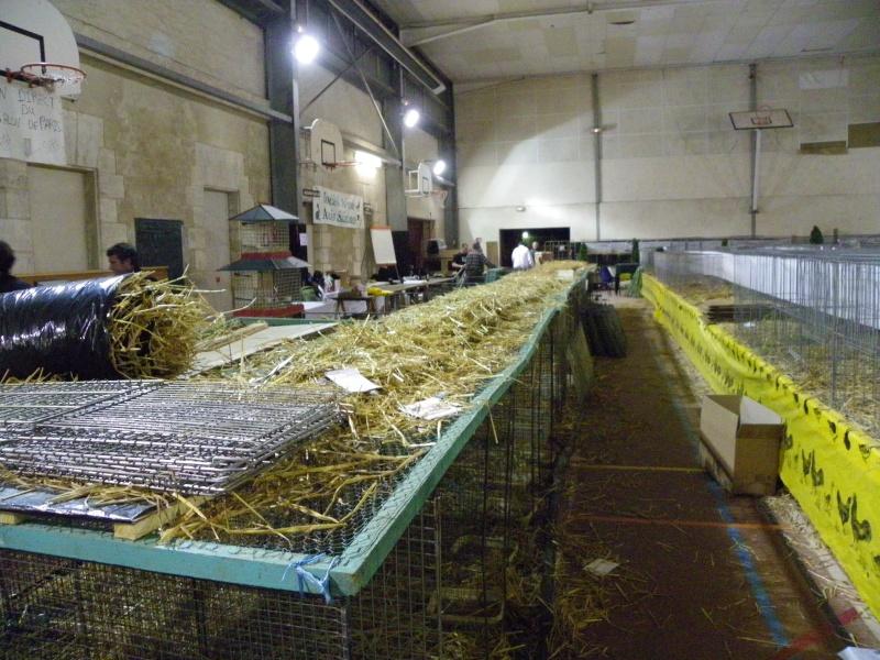 Exposition nationale d'aviculture : Rochefort le 26 et 27 février 2011 Imgp6216