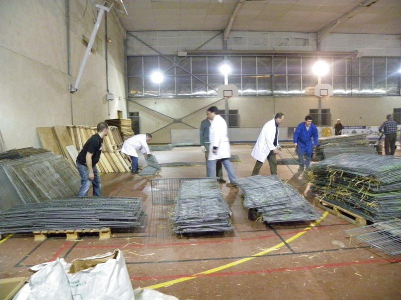 Exposition nationale d'aviculture : Rochefort le 26 et 27 février 2011 Imgp6218