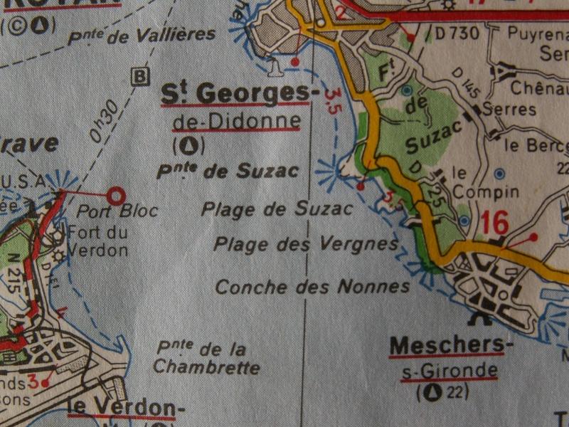 La Pointe de Suzac (entre St George de Didonne et Meschers ) Pict0073