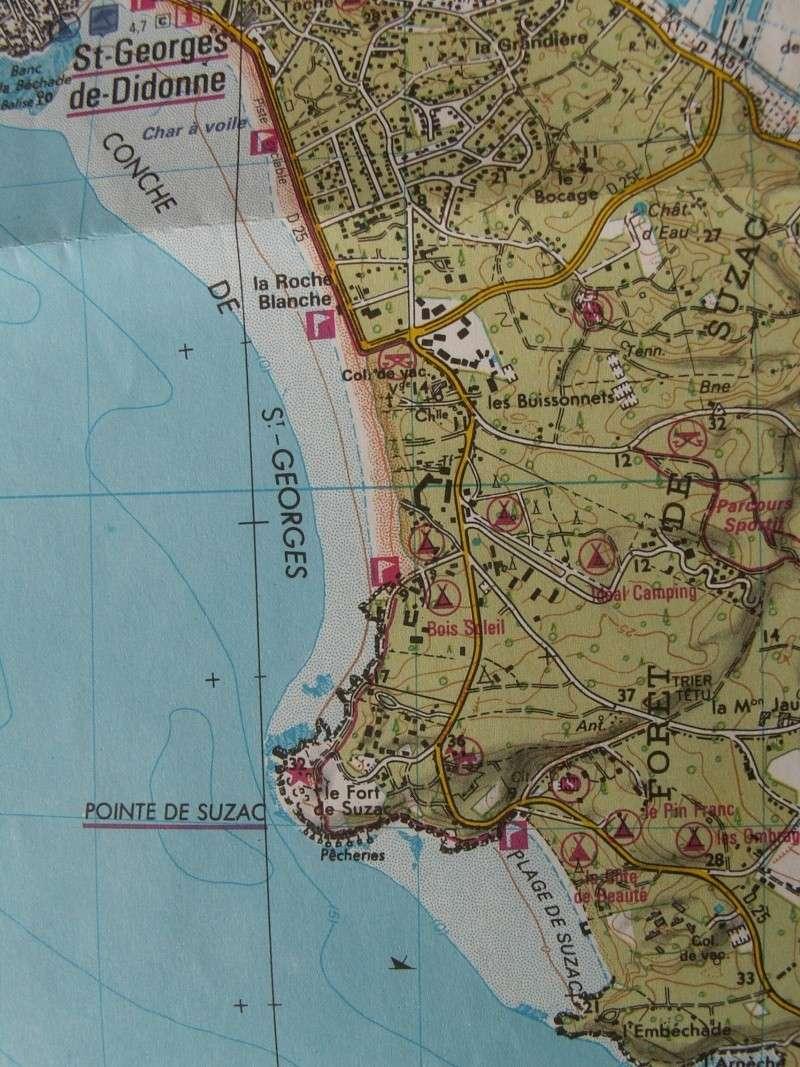 La Pointe de Suzac (entre St George de Didonne et Meschers ) Pict0074