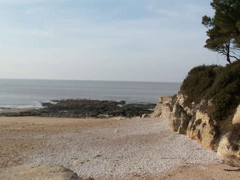 La Pointe de Suzac (entre St George de Didonne et Meschers ) Pict0076