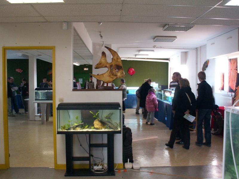 Bourse aquariophile : 14 et 15 février 2009 Bourcefranc Pict0142