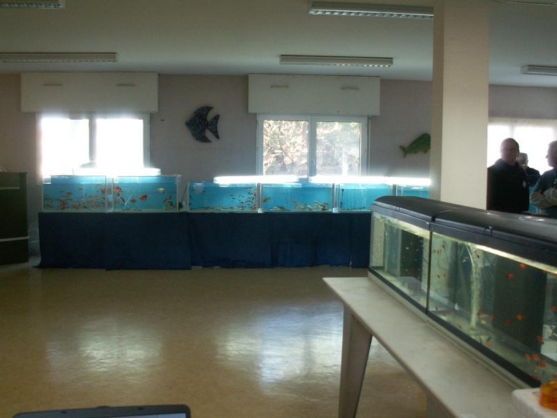 Bourse aquariophile : 14 et 15 février 2009 Bourcefranc Pict0143