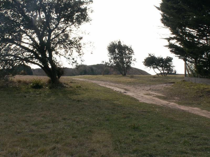 La Pointe de Suzac (entre St George de Didonne et Meschers ) Pict0149