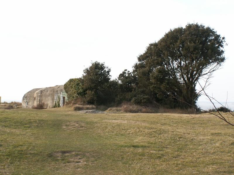 La Pointe de Suzac (entre St George de Didonne et Meschers ) Pict0151