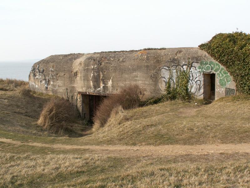 La Pointe de Suzac (entre St George de Didonne et Meschers ) Pict0152