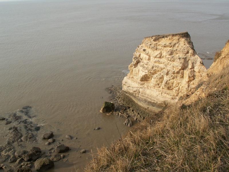La Pointe de Suzac (entre St George de Didonne et Meschers ) Pict0155