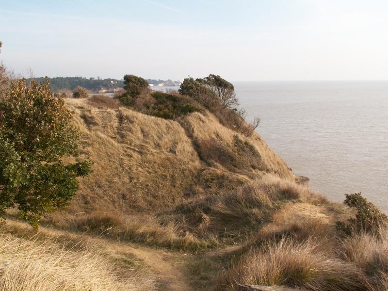 La Pointe de Suzac (entre St George de Didonne et Meschers ) Pict0166