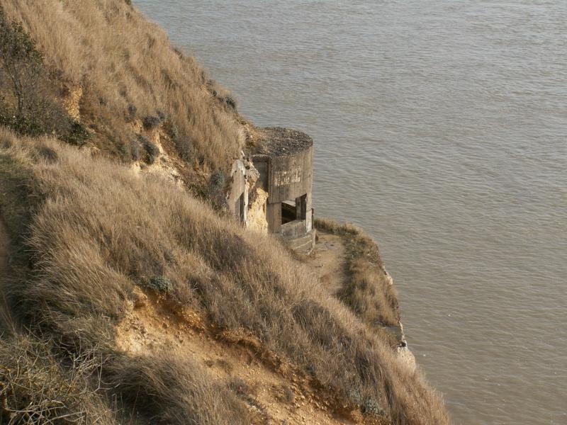 La Pointe de Suzac (entre St George de Didonne et Meschers ) Pict0168