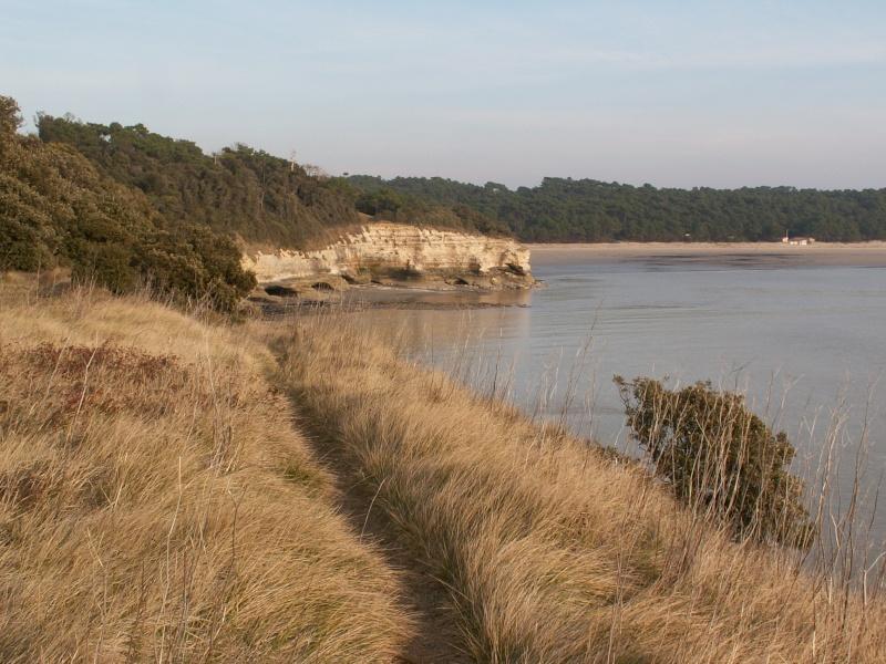 La Pointe de Suzac (entre St George de Didonne et Meschers ) Pict0170