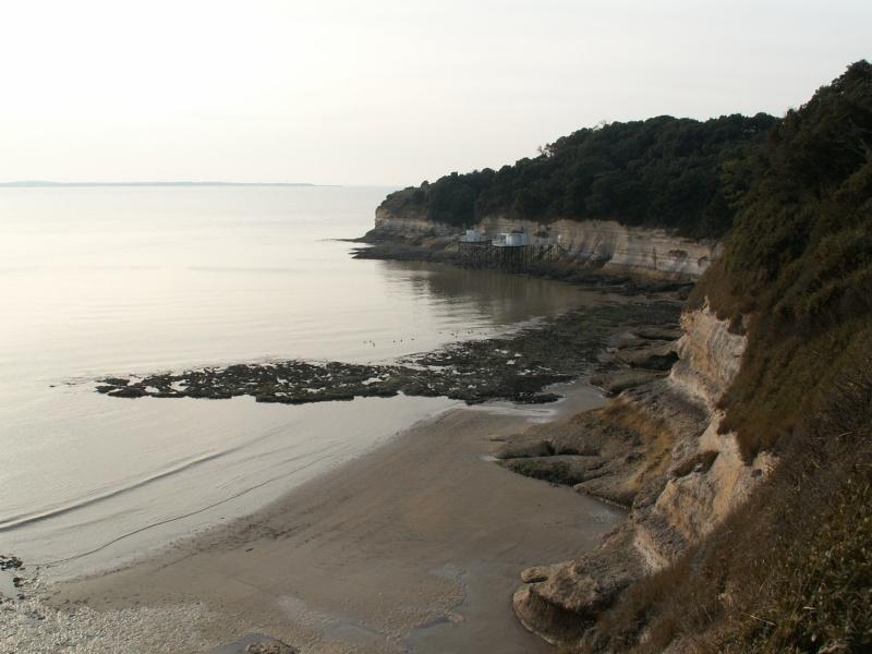 La Pointe de Suzac (entre St George de Didonne et Meschers ) Pict0220