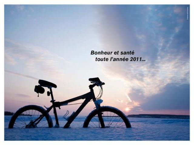BONNE ANNEE 2011 Voeux210