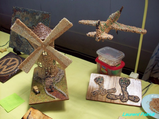 Expo Seraing pentecote 2010 organisée par le club Jemeppe modelism 100_4418