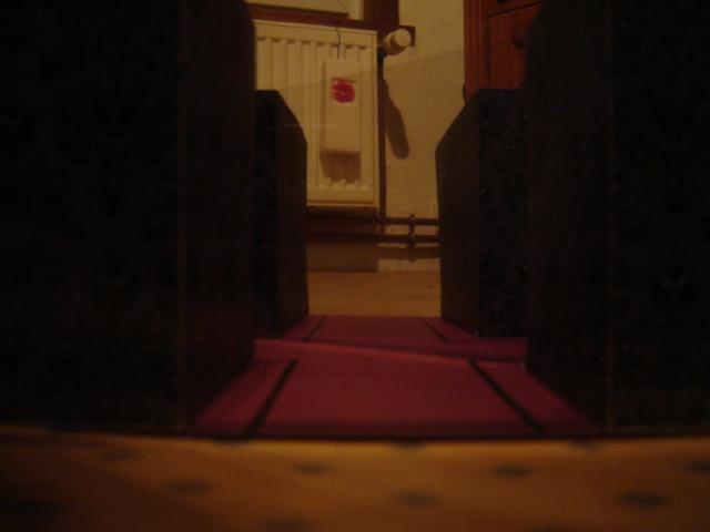 Effet spécial  la mariée fantome - Page 2 Dsc07314