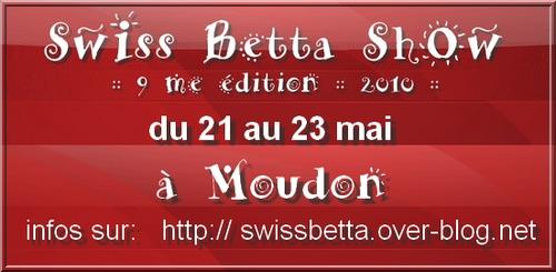 SBC, Moudon, Suisse: 21 - 23 mai 2010 [MàJ le 2 avril] Moudon10
