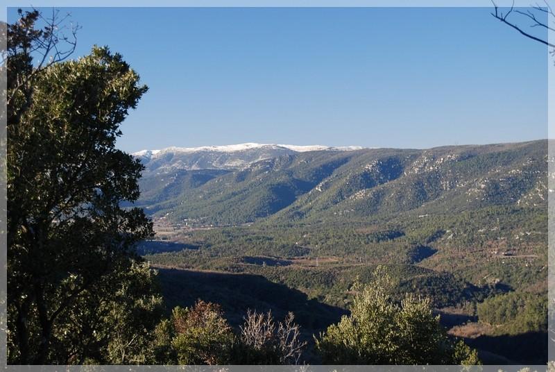 Plateau de Siou Blanc le 18.12.2010 Dsc_0853