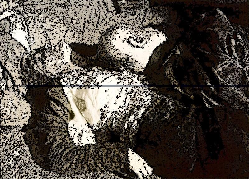 autopsie - Autopsie de Claretta Petacci et de Benito Mussolini Atac210