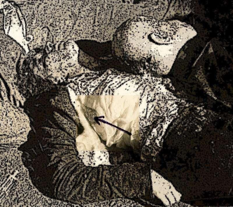 autopsie - Autopsie de Claretta Petacci et de Benito Mussolini Atac310
