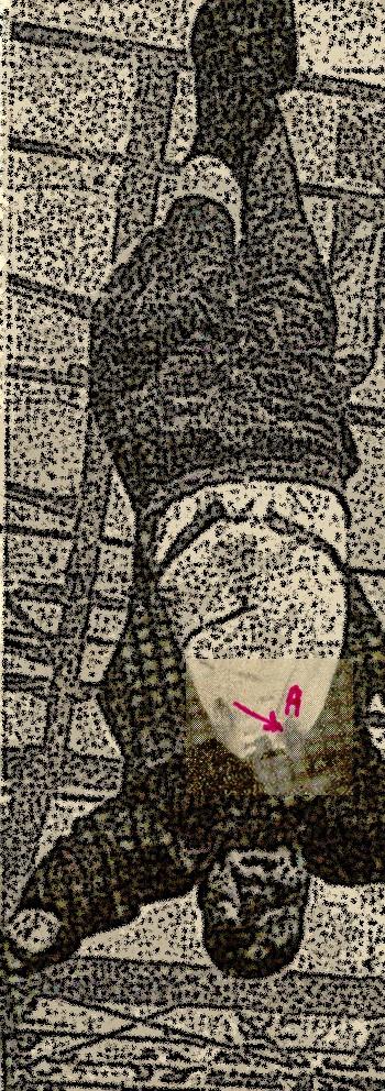 autopsie - Autopsie de Claretta Petacci et de Benito Mussolini Autops11