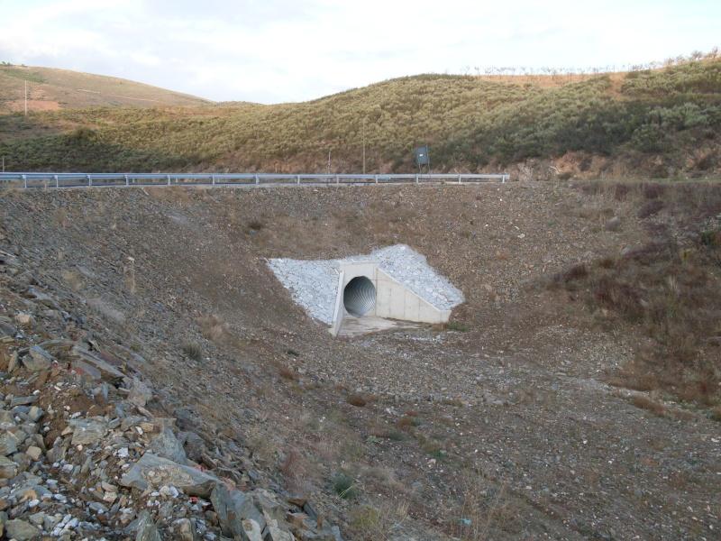 A Barragem das Olgas - Maçores (07/11/2008) Sdc10311