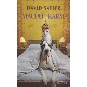 David Safier 51xiro11