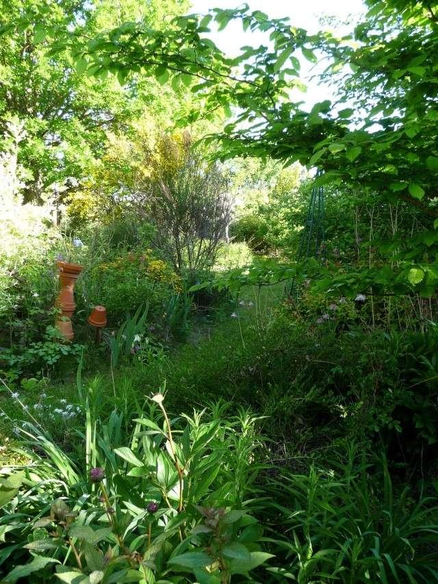 le jardin de Giroflée 2 - Page 33 511_3225