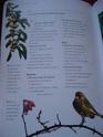 les zozios - Page 2 511_6512