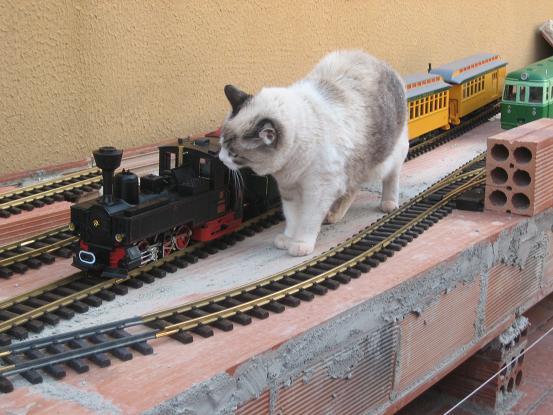 Ferrocarrils de la Terrassa Img_6012