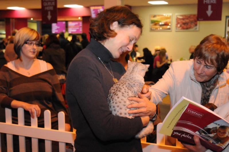 Supreme catshow de Birmingham 2010 Dsc_8322