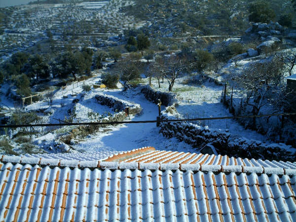 Castedo Branquinho/ Neve 00210