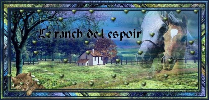 forum spécial FA Ranchd10
