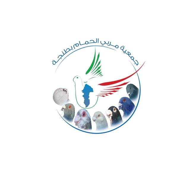 La création de l'association des pigeons de fantaisie à Tanger Fsf110