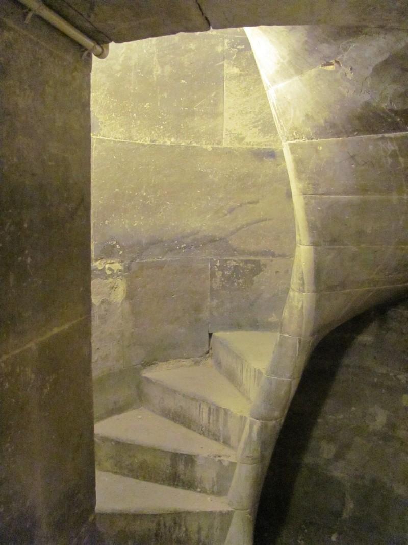 Visite de la Sorbonne - Page 3 Img_9317