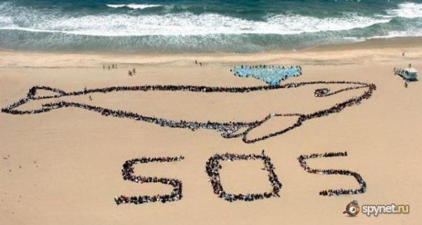 du secours pour arrêter le massacre des dauphins Sos10